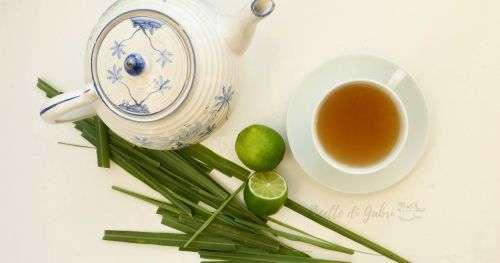 infuso te erba limone lemongrass citronella ricetta