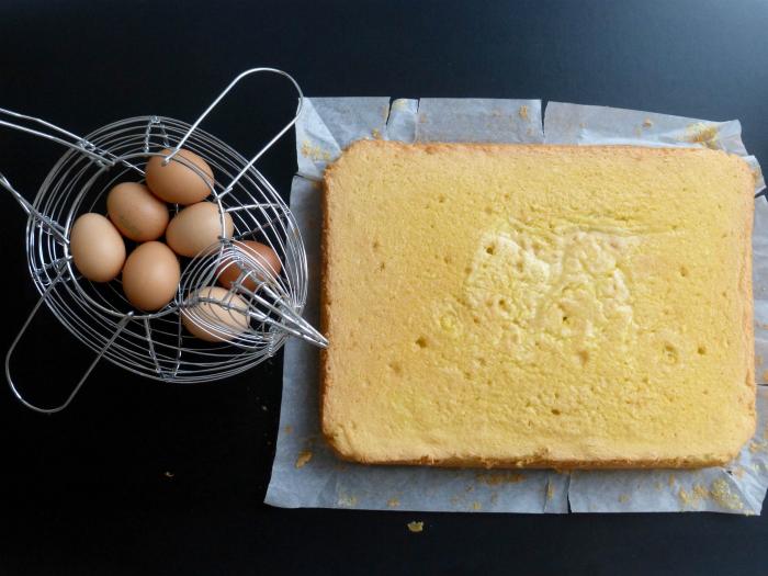 pan di spagna rettangolare perfetto (senza lievito)