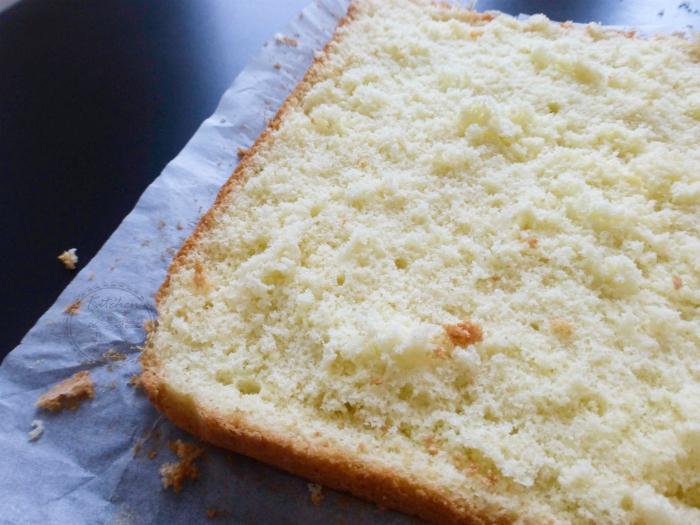 pan di spagna rettangolare perfetto (senza lievito)77