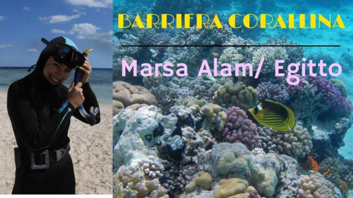 barriera-corallina-egitto sud mar rosso marsa alam
