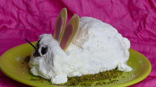 torta coniglietto facile e veloce torta compleanno bambini