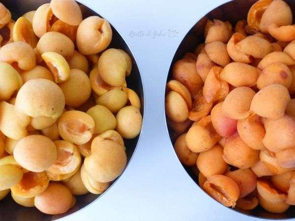 ricette albicocche fresche marmellata veloce