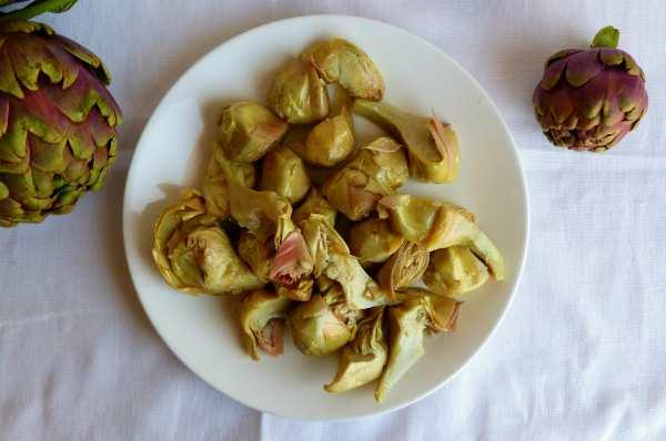 carciofini sottolio ricetta facile gabri