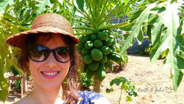 frutta estotica albero papaia ricette di gabri cucina brasiliana