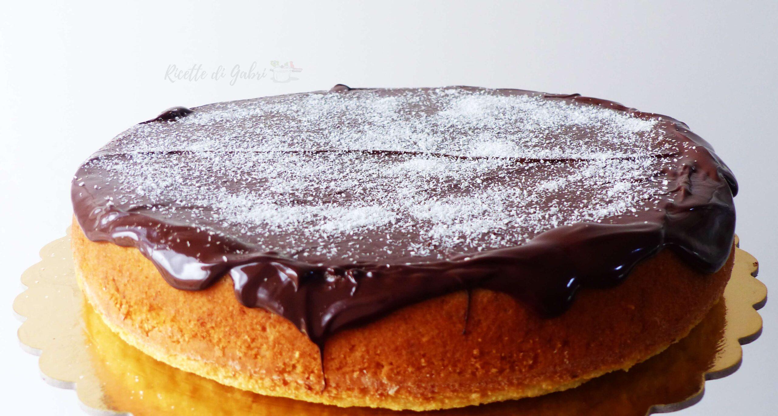 torta al cocco veloce facile con cioccolato ricetta di gabri
